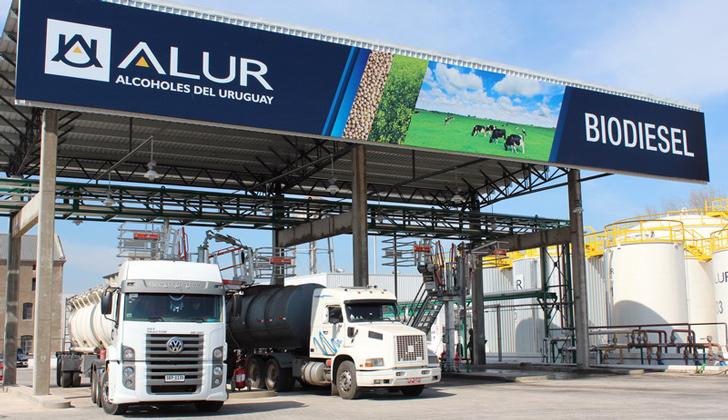 """alur uruguay e - Alcoholes del Uruguay garantizarán pago """"plus"""" ante reclamos"""