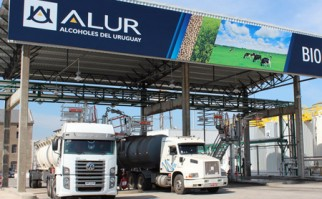 La facturación de Alcoholes del Uruguay (ALUR) podrá llegar a los 330 millones de dólares en el 2015