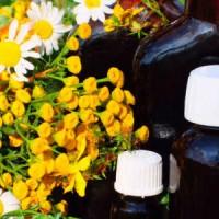 OMS conmemora el Día Mundial de la Medicina Tradicional o Natural