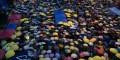 Hong Kong se cubre de paraguas a un mes de iniciado reclamo pro democracia