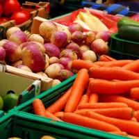Cientos de empresarios del sector agroalimentario aprovechan nuevas oportunidades de negocios