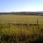 El Poder Ejecutivo promulgó Ley que prohíbe compra de tierra por parte de Estados extranjeros
