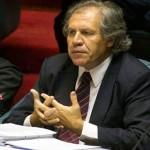 Almagro al Parlamento por decisión de recibir presos de Guantánamo