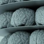La tenacidad es más influyente que la inteligencia