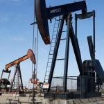 Ambientalistas y organizaciones sociales continúan su lucha contra fracking