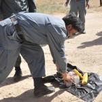 Policía afgana descubre aves volando con explosivos, antenas y electrónica letal