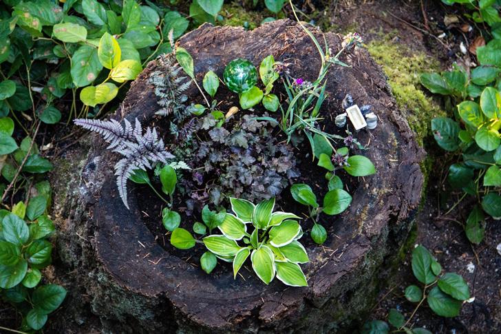 Renueva tu patio con estas ideas f ciles y baratas for Jardines con piedras y troncos