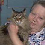 Heroica gata salva la vida de un bebé abandonado en el frío