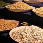 Cinco semillas para incorporar a nuestra dieta diaria