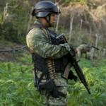 "EE.UU. asume que heroína mexicana de Sinaloa ""sobrepasó"" todo control: 20% de jóvenes adictos"