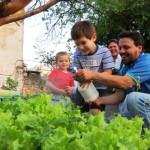 """Proyecto """"Plantar es Cultura"""" pretende fortalecer experiencias de huertas urbanas comunitarias"""