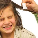 ¿Cómo ayudar a combatir los piojos con remedios caseros?