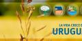 Pabellón uruguayo en Expo Milán 2015 apuesta a mostrar al país como un lugar único