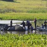 Gobierno descarta riesgos de contaminación en toma de agua de OSE por accidente aéreo en Laguna del Sauce