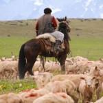 Gremiales rurales denuncian aumento de delincuencia y reclaman impulsar instrumentos jurídicos