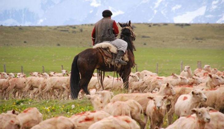 Uruguay: la deuda del sector agrícola