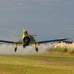 OMS declara como cancerígenos 5 pesticidas, algunos utilizados en Uruguay