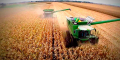 La mayor cosecha mundial en la historia de la plantación de soja, derrumba precios y altera siembra en EE.UU.