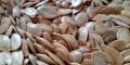 ¿Sabías de los beneficios de las semillas de calabaza?