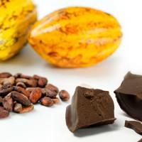 Comprueban que una dieta rica en cacao es capaz de retrasar el avance de la diabetes tipo 2