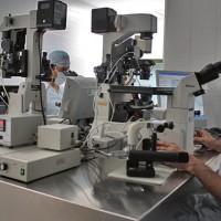 Uruguay pionero en acceso a técnicas de reproducción asistida de alta complejidad
