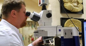 Científicos encuentran vínculos directos entre el sistema inmunológico y la enfermedad de Alzheimer