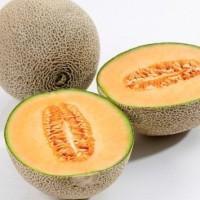 Características del melón