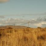 UTE llega al 99,7 de electrificación rural en todo el país