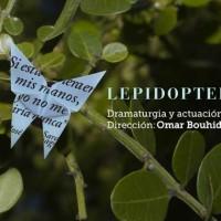Lepidoptera, primera obra con dramaturgia de Ana Pañella en Teatro Solís