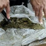 La Policía incautó 450 kilos de droga, cerró 63 bocas de ventas y procesó con prisión a 77 personas