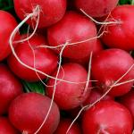 ¿Cuáles son los beneficios de consumir rabanito?