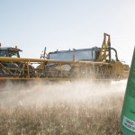 Colombia cancela uso del glifosato incluso contra las plantaciones ilegales de coca: Alemania exhorta imitarlo