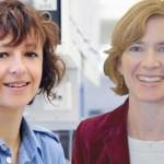 El Premio Princesa de Asturias de Investigación para el sistema que permitirá editar genética humana