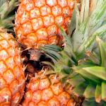 Los beneficios del ananá