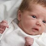 Conectividad de áreas claves del cerebro vinculada directamente con nacer a los 9 meses o ser prematuro