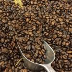 El café torrado y sus posos, son 500 veces más antioxidantes que la vitamina C: planean su reutilización