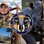 Tienden puente aéreo para salvar 100 rinocerontes mientras autorizan un texano a matar uno como trofeo por US$350.000