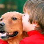 Las mascotas juegan un rol importante en la vida emocional de los niños