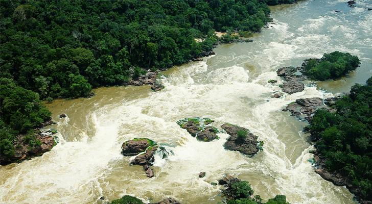 Cuatro tribus amazónicas se unen para luchar contra la
