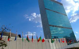 Relatores de ONU resaltaron voluntad política de autoridades uruguayas para atención a la infancia y adolescencia