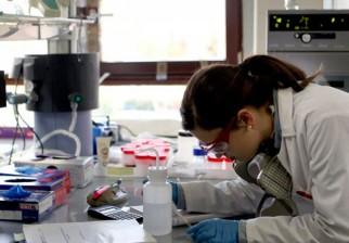 Científicos de Inglaterra y Dinamarca encontraron una posible clave para prevenir la metástasis del cáncer de mama