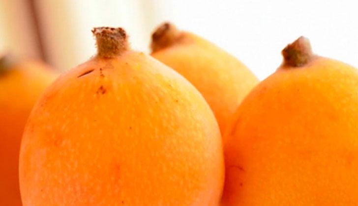 Beneficios de los nísperos para la salud. Foto: EFE