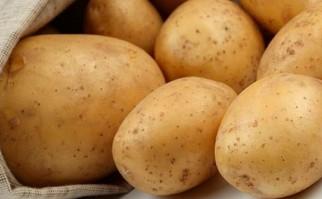 Alimentos ricos en almidón nos hicieron seres más inteligentes