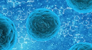 Reprograman células para evitar envejecimiento acelerado provocado por enfermedad