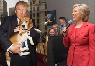 ¿Donald o Hillary, Hillary o Donald?