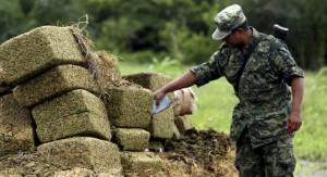 Parlamentarios de América Latina proponen un cambio de modelo en combate a las drogas