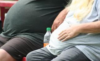 """Descubren un gen responsable de la obesidad: su versión defectuosa impide """"quemar"""" grasas que nos engordan"""