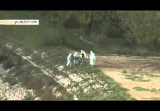 El vicealcalde de Varsovia confirma la captura de una sirena con vida en el río Vístula y viraliza en YouTube