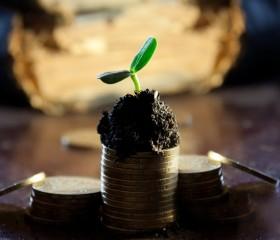 Cómo invertir dinero de forma segura