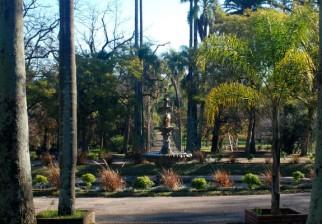 Ciclo de cine al aire libre en el Jardín Botánico